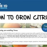 Barossa Mitre 10 - How to Grow Citrus!