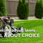 Thinking about lawns